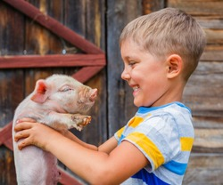 Young farmer - cute boy holding white piglet on a farm
