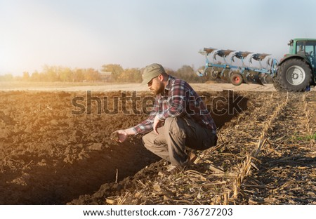 Young farmer examing  planted wheat while tractor is plowing field