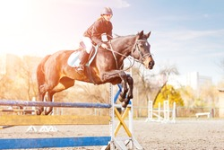 Young female rider on bay horse jumping over hurdle on equestrian sport competition