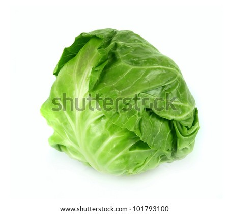 Young fresh green cabbage on a white background