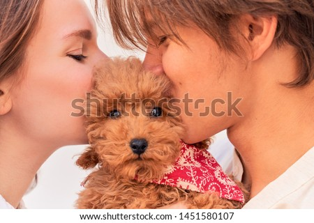 Young girl and guy holding curly cute puppy, kiss and hug him. Close up portrait of family stands in front of white background. Ginger poodle is kissed on right and left cheek, pet looks into camera.