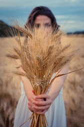 Young girl holding a grain of wheat in a field in her hands
