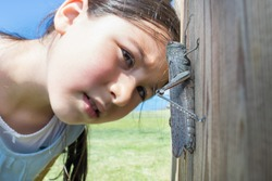 Young girl observing a grasshopper. Nature and friendship concept.