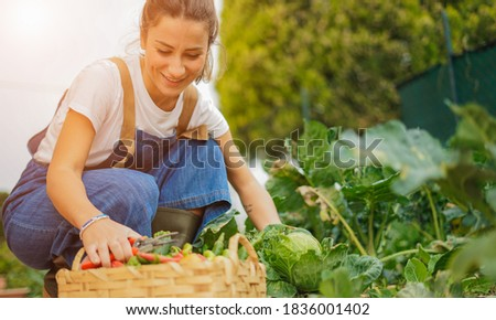 Young girl taking care of her vegetable garden - Concept of new organic business  Photo stock ©