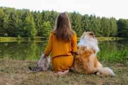 Young girl teenager sitting near the lake  with a collie dog on one side and a cat on another
