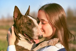 Young girl walks with bull Terrier in fresh air. Bald dog with short hair, long massive muzzle, medium size. Woman is wearing striped jumper. Walking in Park in an open field on bright Sunny day.