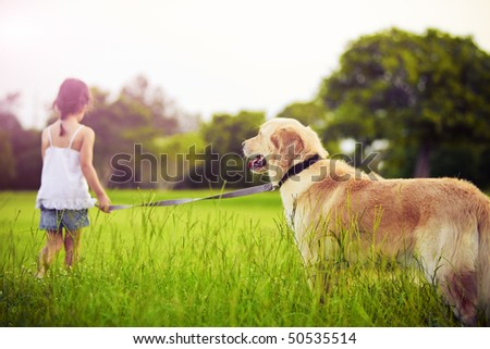 Young girl with golden retriever walking away into sun - stock photo