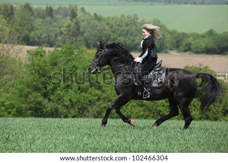 Young girl with young stallion