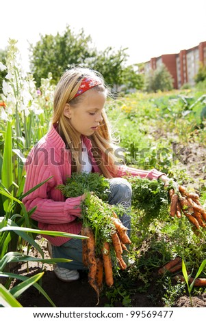 young girls working in vegetable garden, hold fresh carrots