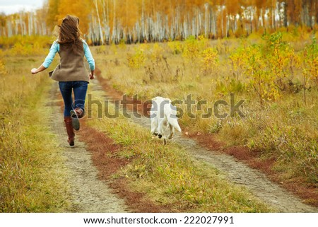 Young golden retriever for a walk with his owner. Dog breed labrador outdoors.