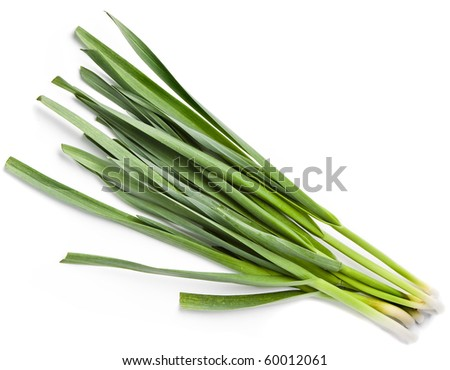 young green garlic leaves isolated