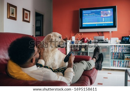 Young handsome black man sitting couch indoor at home with dog watching tv - comfortable, entertainment, relaxation concept