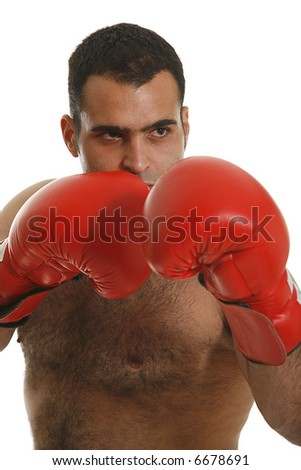 Young handsome boxer