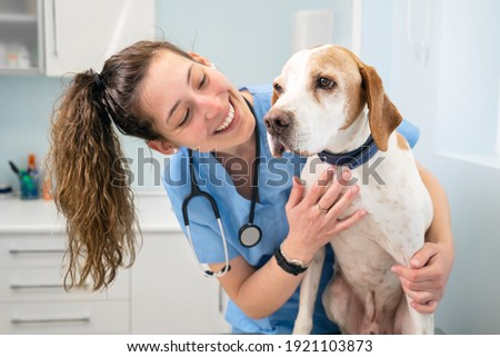 Young happy veterinary nurse smiling while playing with a dog. High quality photo