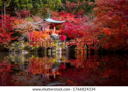 Young Japanese girl traveller in traditional kimino dress standing in Digoji temple with red pagoda and red maple leaf in autumn season in Kyoto, Japan. Japan tourism, nature life Stock photo ©