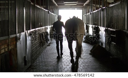 Young jockey is walking with a horse out of a stable. Man leading horse out of stable. Rear back view. Steadicam shot.