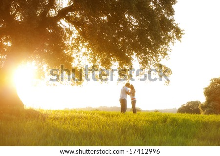 Young kissing couple under huge tree at sunset