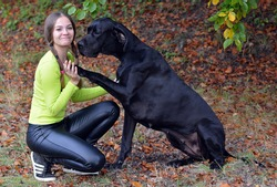 Young lady with Great Dane in the park