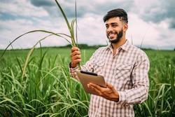 Young Latin farmer working with digital tablet on sugarcane plantation. Brazilian farmer.