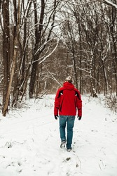 Young lonely man in a red jacket, blue jeans and khaki hat walks in the winter forest. Traveling, nature walks, depression, loneliness, tall trees in the park, white snow. Beautiful landscape.