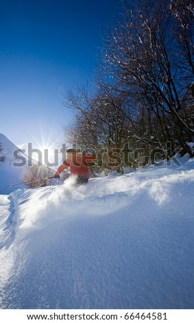 Young male freeride skier goes down in powder snow. Backlight, vertical frame, rear view, snowy woods, red jacket.