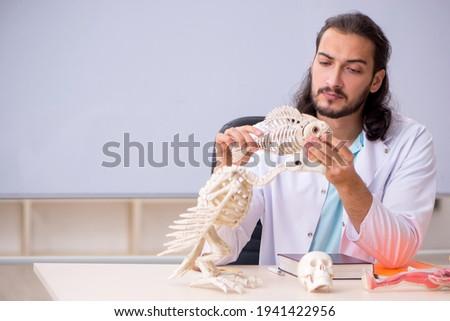 Young male zoologist examining fish skeleton Zdjęcia stock ©