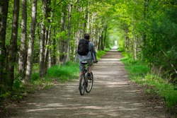 Young man biking cycling through the park alley green tunnel made of tree brunches. Summer / spring scene. Recreational sport and cycling concept. Selective focus. Caledon trailway path, Ontario.