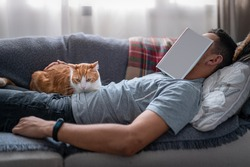 Young man falls asleep on the sofa with a book on his face. A white and brown cat lies on top of the young