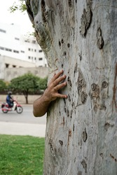 Young man holding a tree with his right hand and his body and face are hidden behind the tree during Spring time