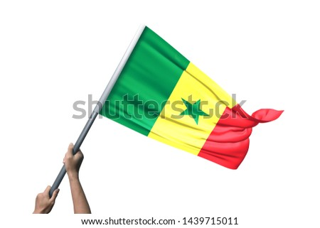 Young man holding Senegal Flag in White Background, Flag of Senegal. #1439715011