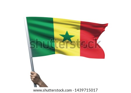 Young man holding Senegal Flag in White Background, Flag of Senegal. #1439715017