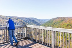 Young man in blue jacket looking at canaan valley mountains in Blackwater falls state park in West Virginia during colorful autumn fall season with yellow foliage on trees, rock cliff at Lindy Point