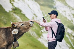 Young man photographing swiss cow against mountain. Mount Pilatus, Lucerne, Switzerland.