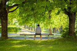 Young man sitting alone on bench between trees at beautiful green park. Thinking about life. Spending time alone in nature. Peaceful atmosphere. Back view.