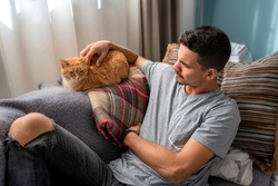 Young man sitting on a sofa caresses a tabby cat lying on the back of the sofa. Under the window light