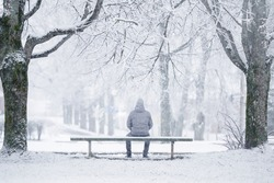 Young man sitting on bench between trees at park in white winter day after blizzard. Fresh first snow. Thinking about life. Spending time alone in nature. Peaceful atmosphere. Back view.