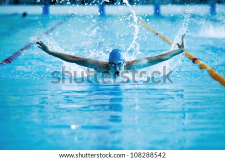young man swims the butterfly in the pool