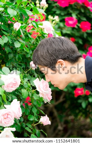 Young man taking care of a rose garden #1152641801