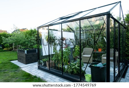 Young man tending to herbs and vegetable plants in a beautiful greenhouse Stock photo ©