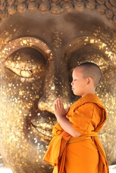 young monk in Thailand