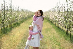 Young mother and her twin daughters walk through an Apple orchard in the spring during the flowering period and hug.