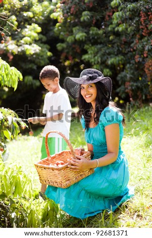 young mother and son picking lychees in litchi farm - stock photo