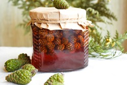 Young pine cones jam. Useful and tasty dessert