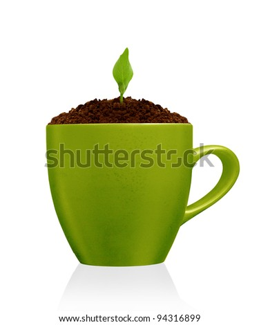 Young plant growing in green mug, isolated on the white backgrounds
