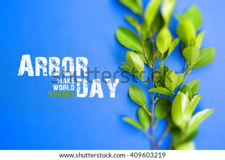 Young plant. planted young forest. Arbor day. soft focus. sun light effects filter. blurry background