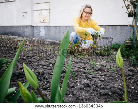 young pretty woman with yellow and glasses sweater weeding weeds #1360345346