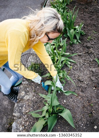 young pretty woman with yellow and glasses sweater weeding weeds #1360345352