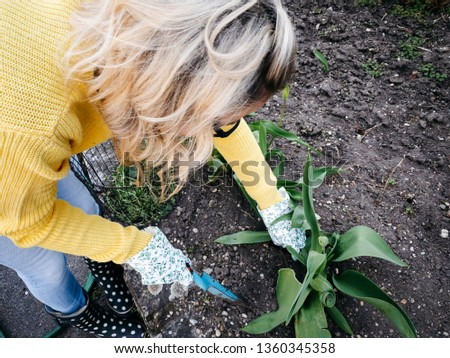 young pretty woman with yellow and glasses sweater weeding weeds #1360345358
