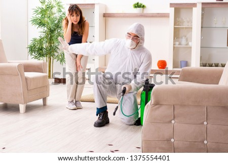 Young professional contractor doing pest control at flat  Foto stock ©