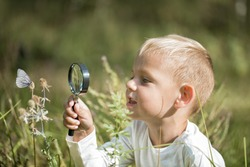 Young researcher explores nature with a magnifying glass on a summer sunny day